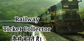 railway ticket collector