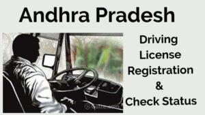 AP Transport Learner's Licence (LLR)